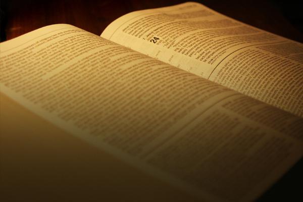 The Wisdom Chronicle