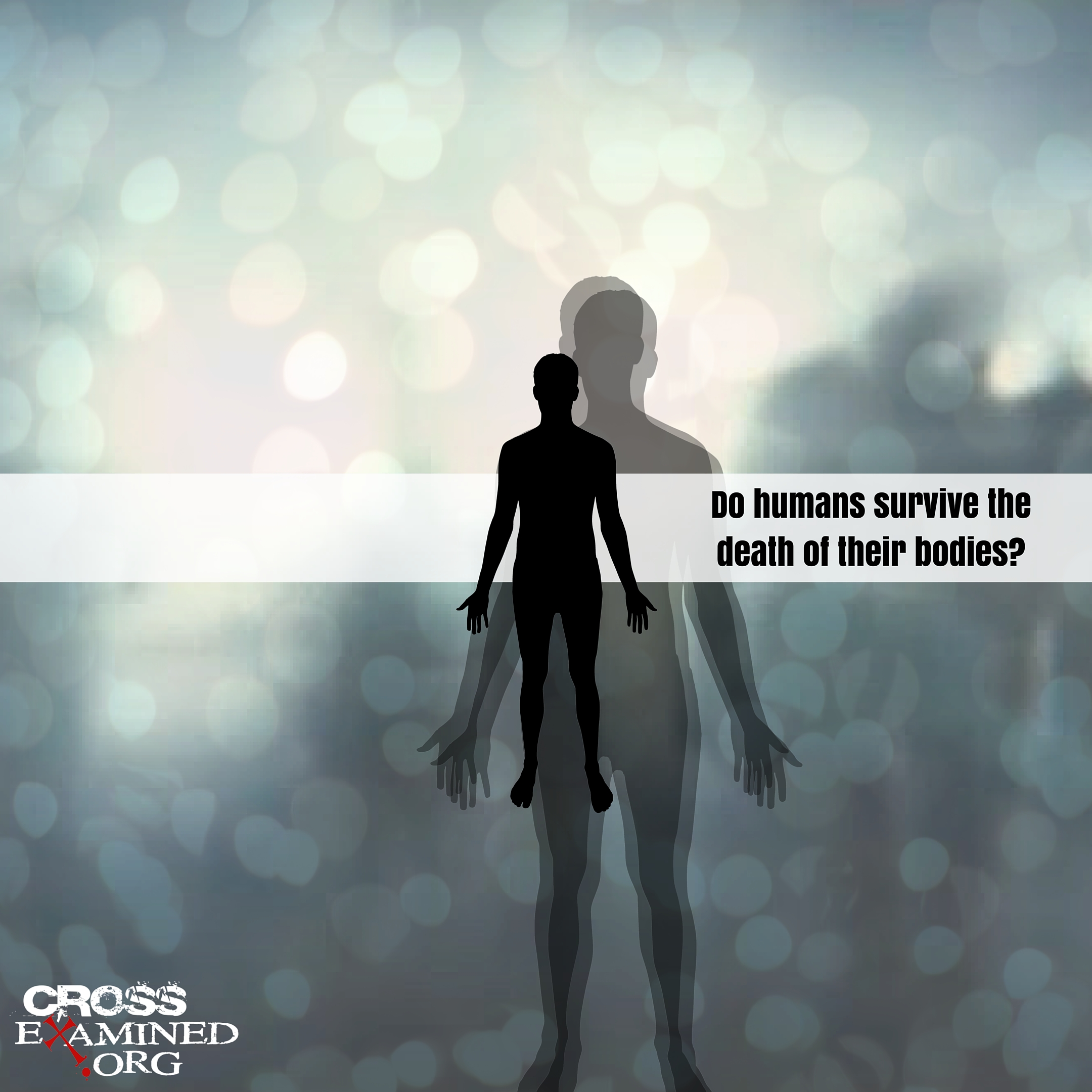 The Law of Identity & the Human Soul