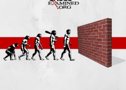 evolution crisis BLOG