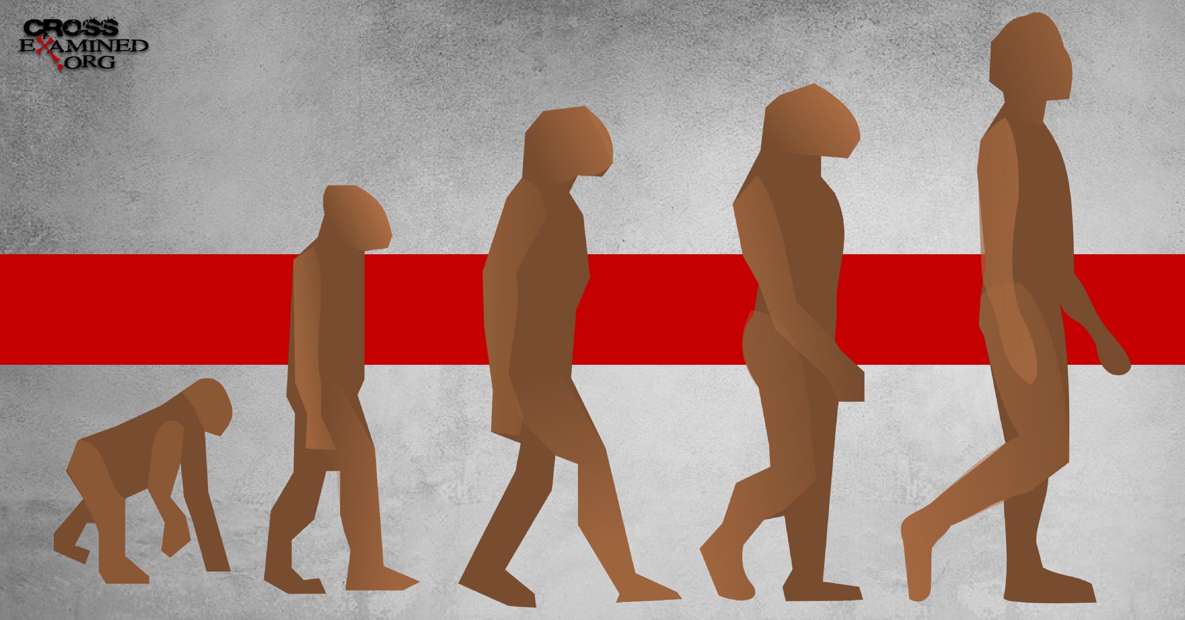 Human Nature According to Darwin – A Christian Response