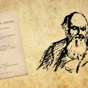 The Darwin Tales