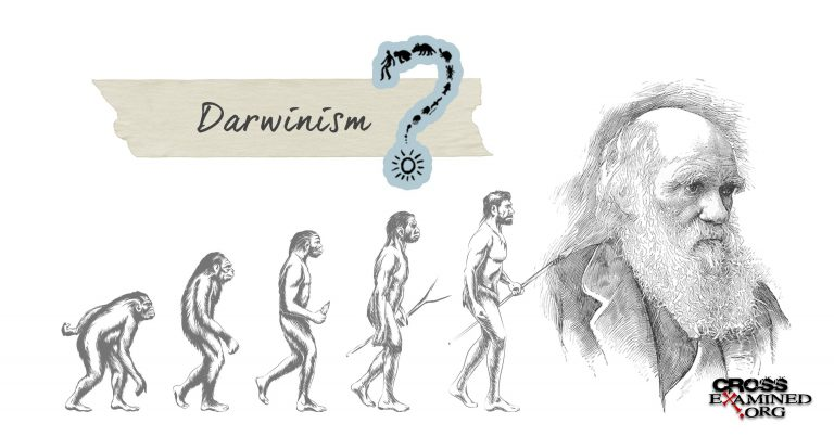 Yale computer science professor David Gelernter expresses doubts about Darwinism