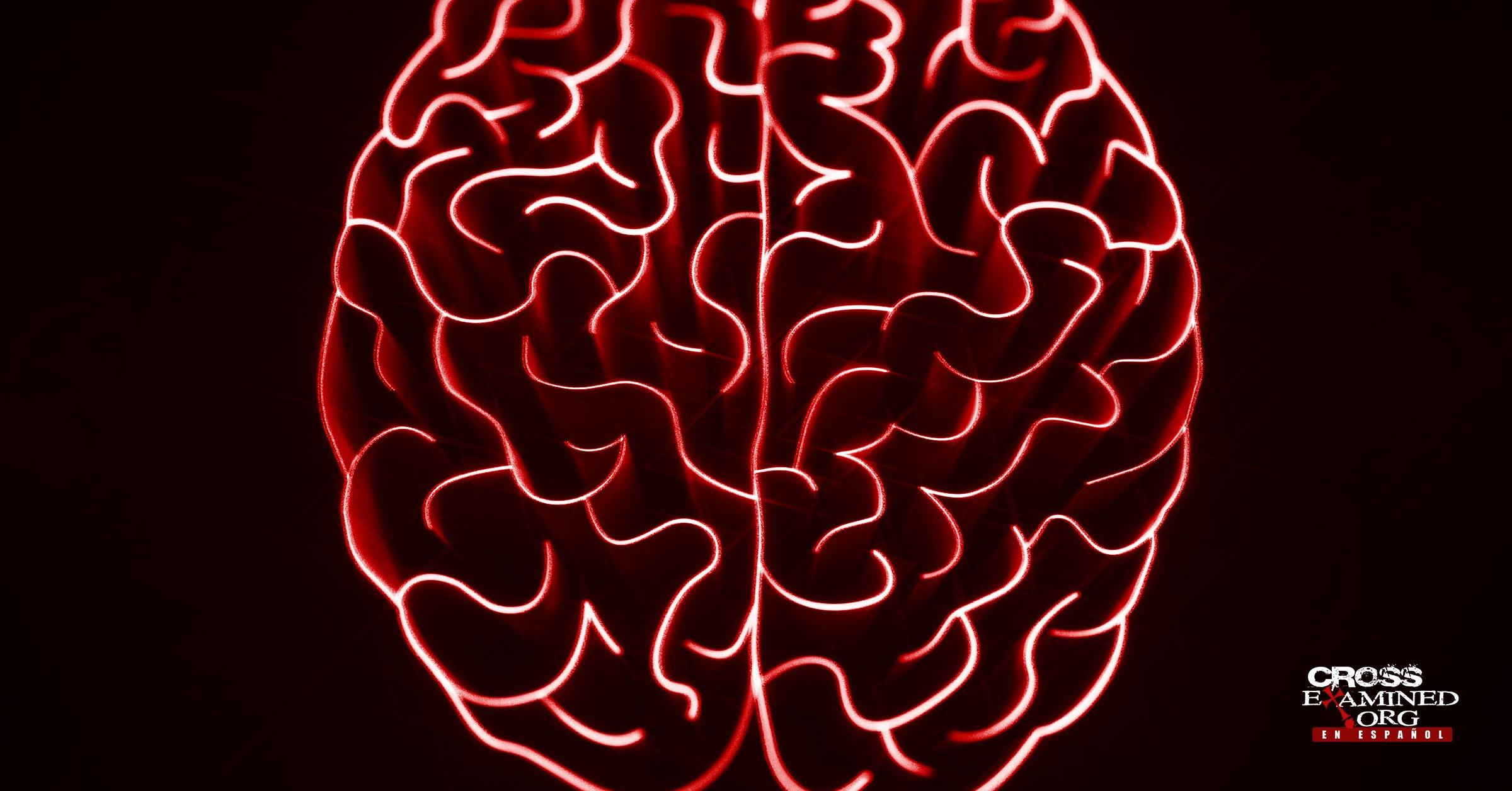 The Action Lab y el Argumento de la Intencionalidad