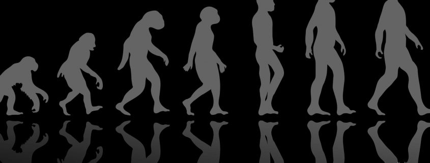 Why Studying Evolution Will Likely Challenge Your Kids' Faith