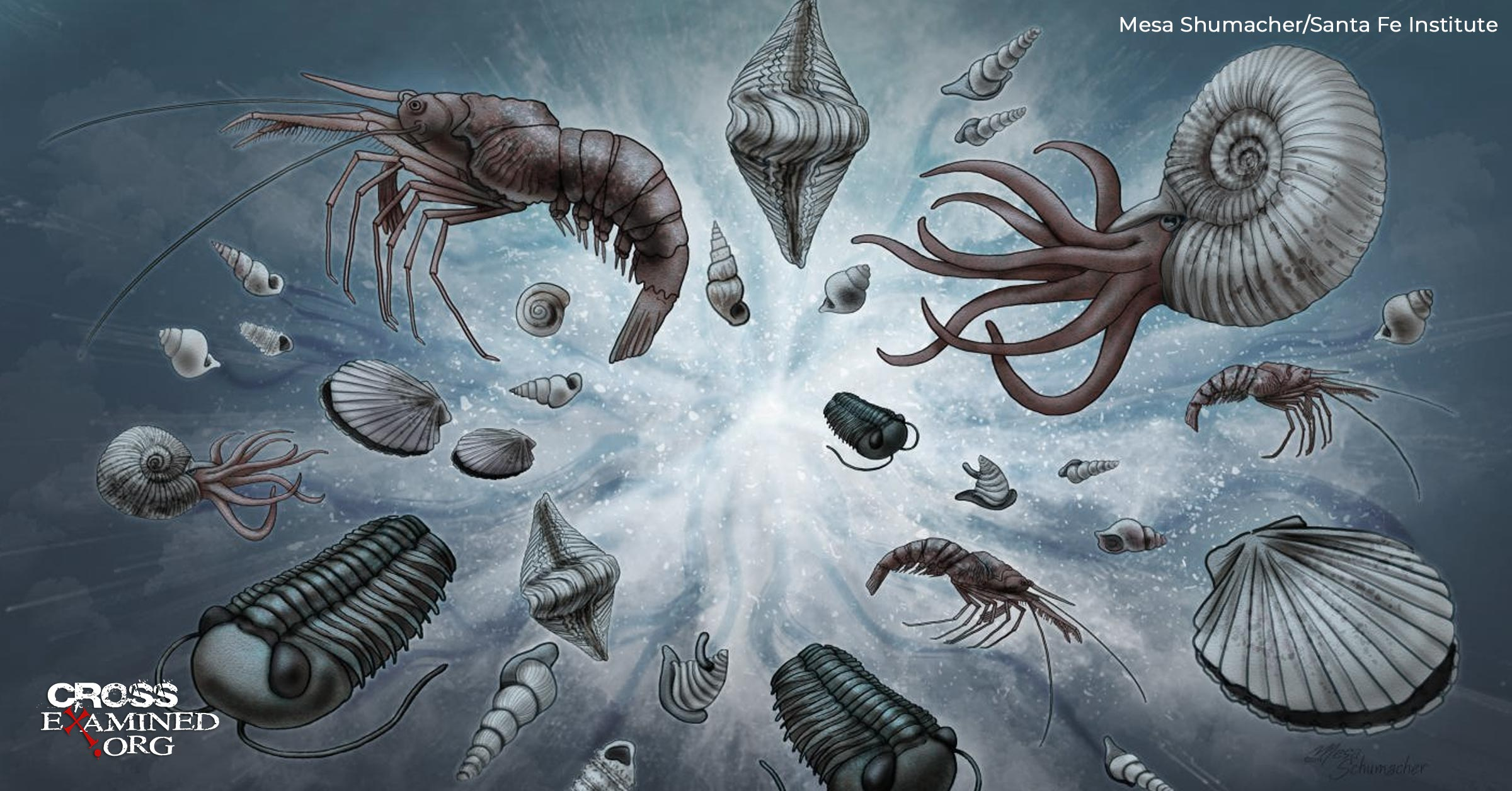 Does The Cambrian Explosion Disprove Darwinism?