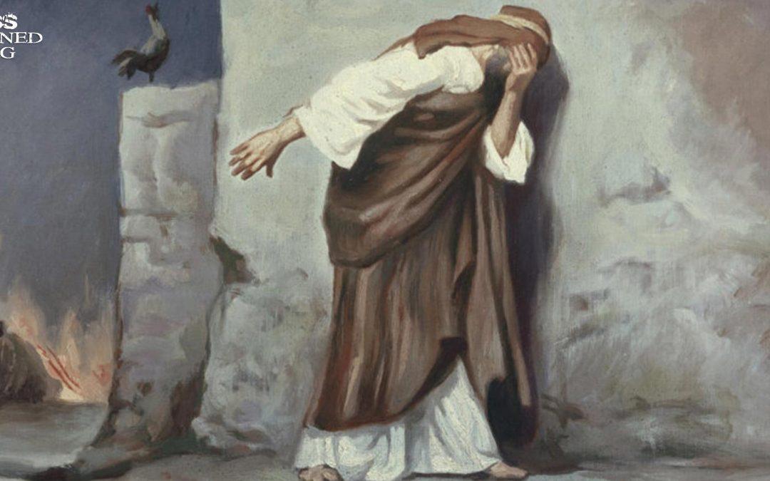 Resurrection Defense Series: Embarrassing Details